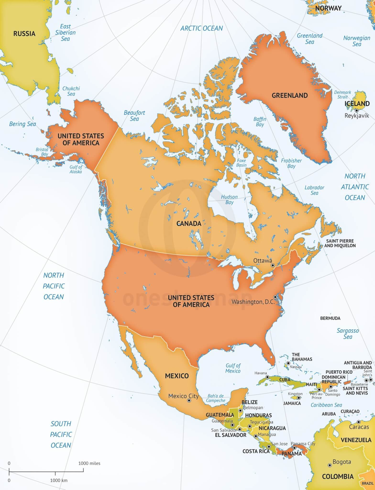 Vector Map of North America Continent