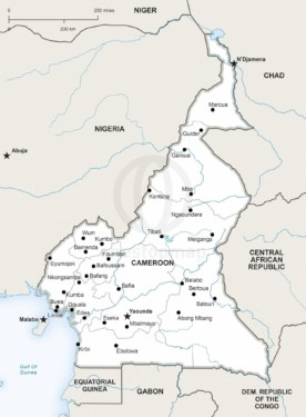 Map of Cameroon political