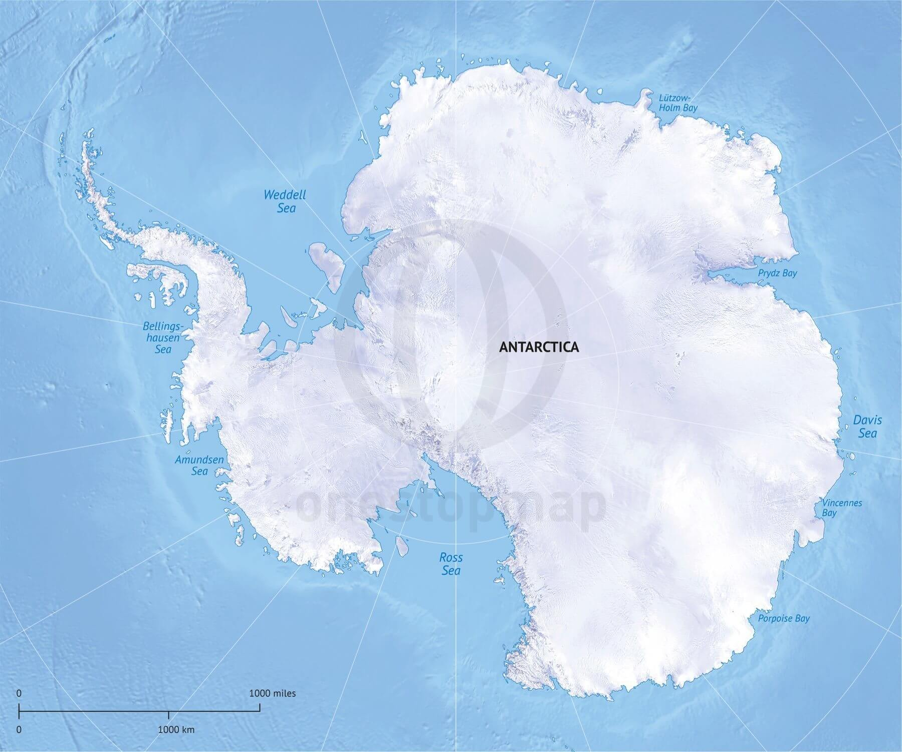 Vector Map Antarctica Continent Relief One Stop Map - Antarctica political map